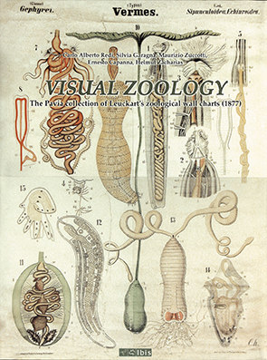 Visual ZoologyThe Pavia collection of Leuckart's zoological wall charts (1877)